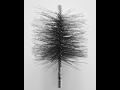 Schornsteinb�rsten f�r schonende Reinigung von Edelstahleinlagen in Schornsteinen, Tschechien