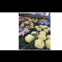 Věnce, svíčky a květinová výzdoba na hroby a hřbitovy - na památku ...