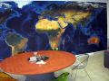 Digitální potisk textilu-výroba interiérových dekorací metodou sublimace