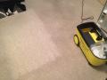Strojní čištění koberců, sedaček, čalounění od profesionální firmy