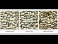 Optické třídiče - pro kávu, semínka, sklo, rýži, oříšky, sůl, plasty i kovy