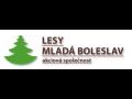 Výkup a prodej dřevní hmoty Mladá Boleslav - výkup od malo i ...