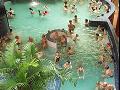 Zájezdy do termálních lázní v Maďarsku, tropický ostrov v Berlíně
