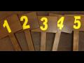 Dražby dřeva na stojato, prodej lesů bez pozemku, aukce dříví