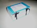Vícetisky projektové dokumentace pro výběrová řízení