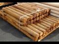 Impregnace a ochrana dřeva, dřevěných podlah, nábytku, krovů i konstrukcí proti dřevokaznému hmyzu