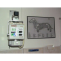 Veterinární péče o malá i velká zvířata