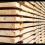 Sušárna na sušení řeziva a dřeva se systémem měření vlhkosti dřeva