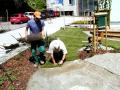 Pokládka trávních koberců Frýdek - Místek, Třebíč