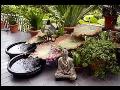 Zdravé bydlení, zdravý životní styl - návrhy, poradenství Feng Shui