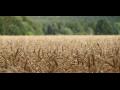 Zemědělské družstvo Velké Svatoňovice