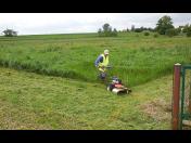 Údržba zahrad - odplevelení trávníků, postřik proti plevelům