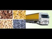 Mák, lněná semínka, jáhly a jiné zemědělské komodity - prodej, velkoobchod, dovoz