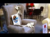 Speciální odolná textilie proti poškození domácími mazlíčky - odolná proti drápkům i skvrnám