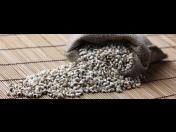 Slzovka - obilovina na zahlenění, otoky, hubnutí, detoxikaci, trávení i posílení sleziny