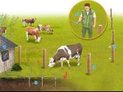 Prodej napájecích zařízení a elektrických ohradníků pro chov dobytka