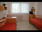 Stacionář Praha– léčba, rekonvalescence a relaxační pobyty v příjemném prostředí