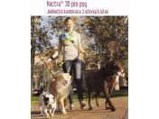 S přípravky Vectra 3D pipeta a Adaptil bude cestování se psem pohodové, beze stresu během jízdy