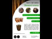 Zierstämme Carapanauba, Quari quara für Innenräumen und für Möbelproduktion in der Tschechischen Republik