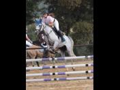 Výcvik jezdců Nebanice