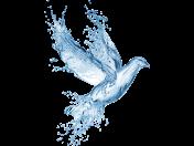Vliv estrogenů na zdroje pitné vody a zdraví lidí a účinné odstranění filtrací