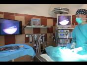 Veterinární klinika Liberec - laparoskopická kastrace u fen a koček
