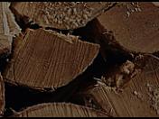 Výkup dřevní hmoty od malo i velkododavatelů Mladá Boleslav