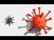 Testování protilátek na COVID-19 pro samoplátce