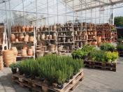 Prodej venkovních i vnitřních keramických květináčů či obalů na květináče i od českých výrobců