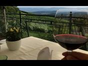 Ochutnávka vína v degustačním sklípku pro cyklisty, turisty i skupiny až 30 osob