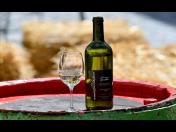 Znojemské historické vinobraní – ochutnávka dobrého vína, bohatý zábavní a kulturní program