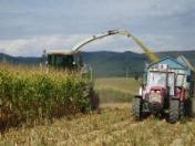 Zemědělské práce, traktorové práce-osev, výmlat obilovin, sklizeň na siláž