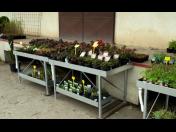 Pěstební stoly od českého výrobce z Litomyšle, novinka na trhu
