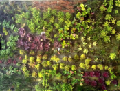 Zahradní osvětlení prodej a montáž Praha - rozjasnění Vaší zahrady
