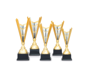 Sportovní poháry a medaile v našem eshopu