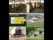 Zemědělská mechanizace a služby SILYBA | Ústí nad Orlicí