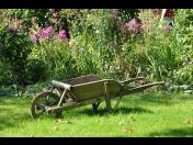 Zahradnické práce, údržba trávníků, kácení stromů a úklid sněhu v zimních období.