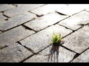 Rekonstrukce pozemních komunikací, asfaltérské a dlaždické práce