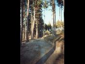 Zemní práce, rekultivace pozemků, opravy chodníků, cest, výkopy základů, Vysočina