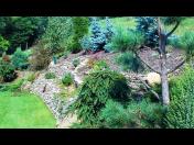 Kompletní zahradnické služby - údržba zahrad, výsadba trávníků, stromků, živých plotů