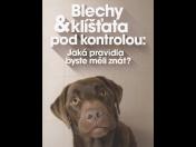 Účinná ochrana před klíšťaty, parazity - tablety, pipety, obojky pro psy, kočky