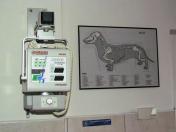 Veterinární péče o malá i velká zvířata Česká Lípa