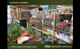 Velkoobchodní prodej výsadby a zahradnických potřeb