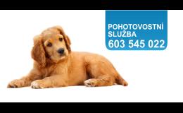 Veterinář, pohotovostní veterinární služba Ostrava - Poruba