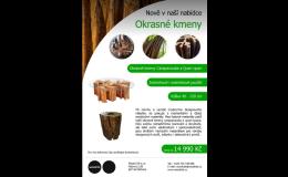 Okrasné kmeny z tvrdého dřeva - Zlínský kraj