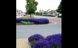kompletní realizace městské zeleně, parku Zlínský, Jihomoravský kraj