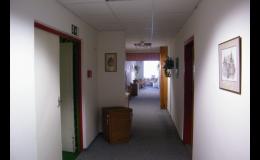 Mobilizace a léčba pohybového aparátu Praha