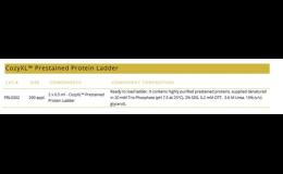 CozyXL™ Prestained Protein Ladder – ihned k použití