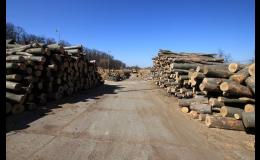 Krbové dřevo na prodej - velkoobchod Znojmo
