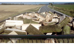 Kácení stromů, prodej palivového dřeva v Háji ve Slezsku